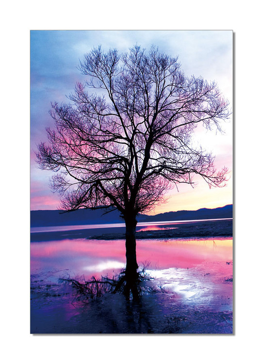 Pink Tree Mounted Art Print