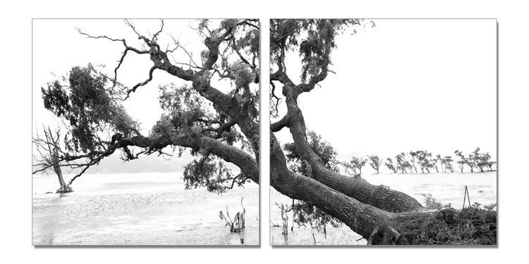 Praying Tree (B&W) Mounted Art Print
