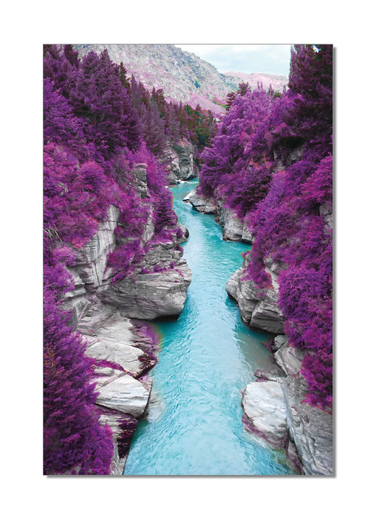 River flows in Purple Forest Mounted Art Print