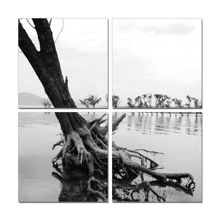 Roots in River Mounted Art Print