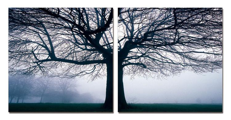 Silhouette of tree in fog Mounted Art Print
