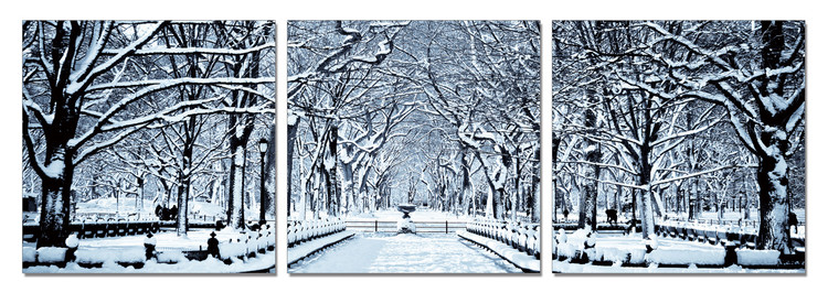 Snowy park Mounted Art Print