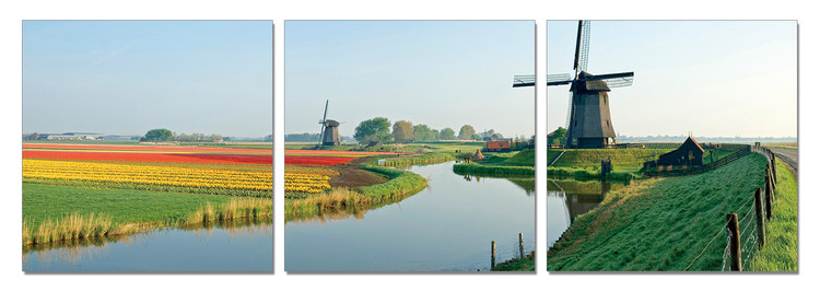 Windmills of Holland Mounted Art Print
