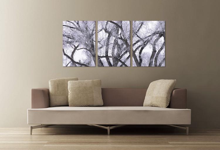 Winter tree crown Mounted Art Print