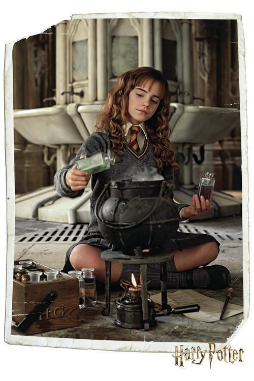 Murais de parede Harry Potter - Hermione Granger