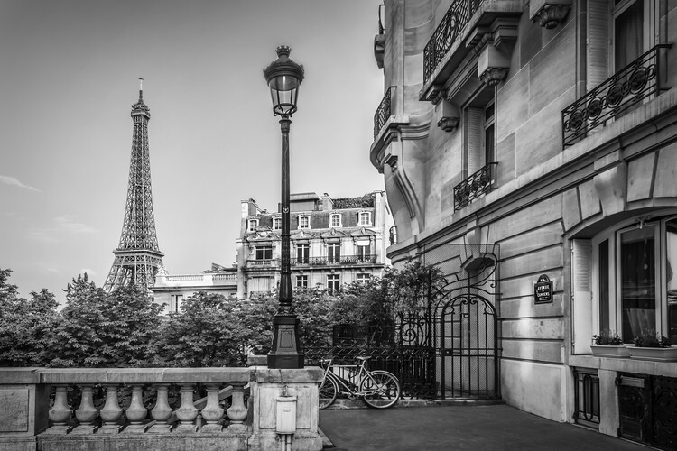 Murais de parede Parisian Charm