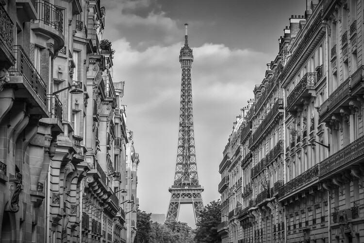 Murais de parede Parisian Flair