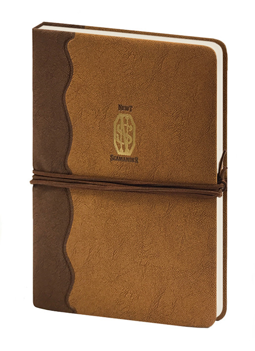 Notebook Fantastic Beasts The Crimes Of Grindelwald - Newt Scamander