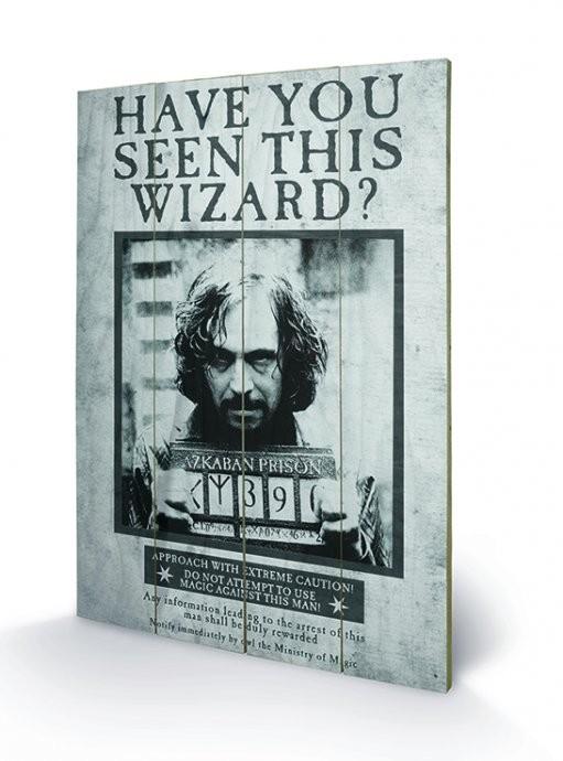 Pintura em madeira Harry Potter - Sirius Wanted