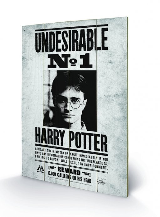 Pintura em madeira Harry Potter - Undesirable No1