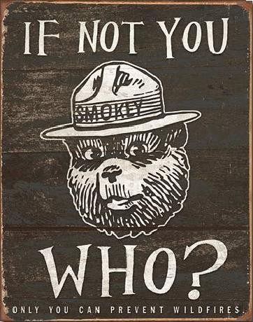 Placa metálica SMOKEY BEAR - If Not You