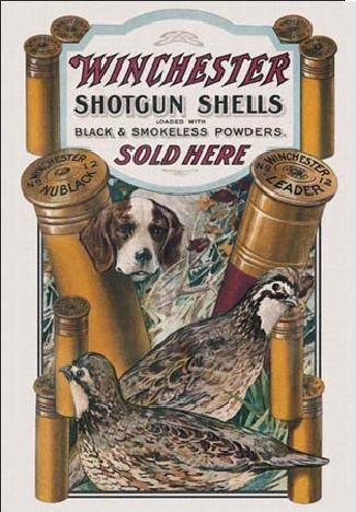 Placa metálica WIN - dog & quail