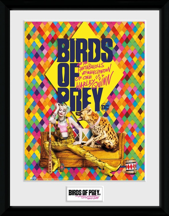 Birds Of Prey And The Fantabulous Emancipation Of One Harley Quinn One Sheet Hyena Framed Poster Buy At Europosters