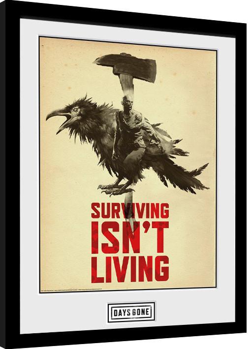 Framed poster Days Gone - Crow