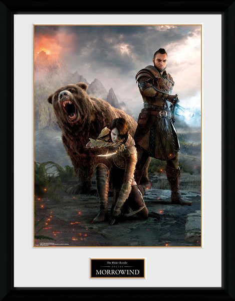 Framed poster Elder Scrolls Online: Morrowind - Trio