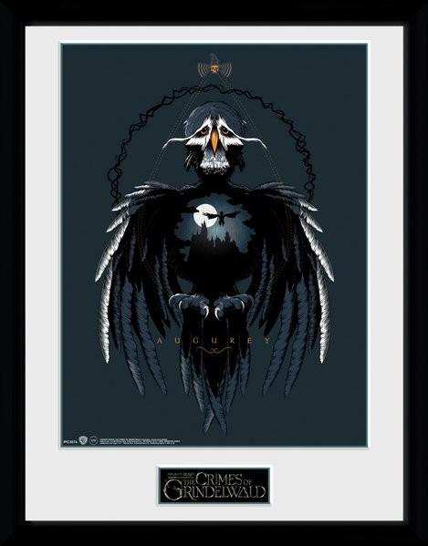 Fantastic Beasts 2 - Augurey Framed poster