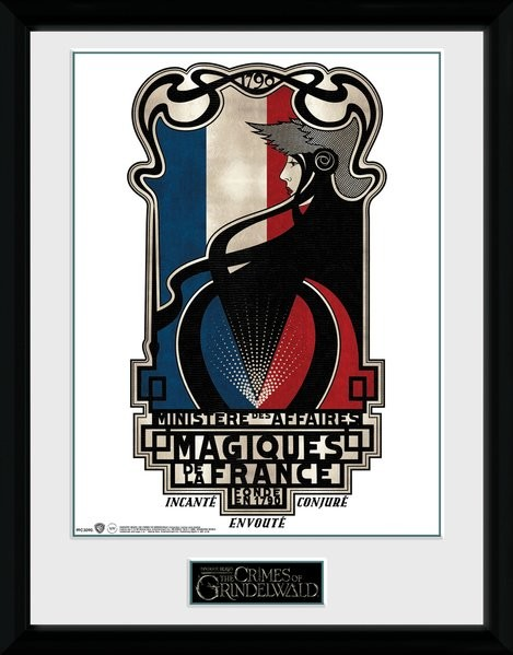 Fantastic Beasts 2 - Magiques de la France Framed poster