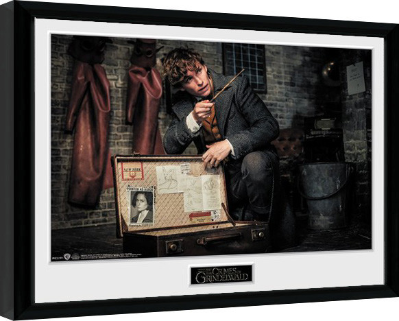 Fantastic Beasts 2 - Newt Suitcase Framed poster