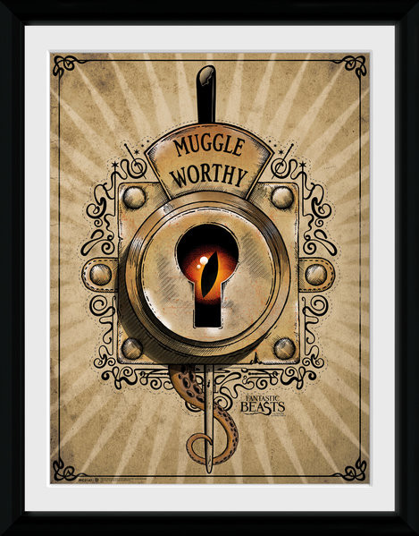 ... Where To Find Them - Muggle Worthy plastic frame : Buy at Europosters