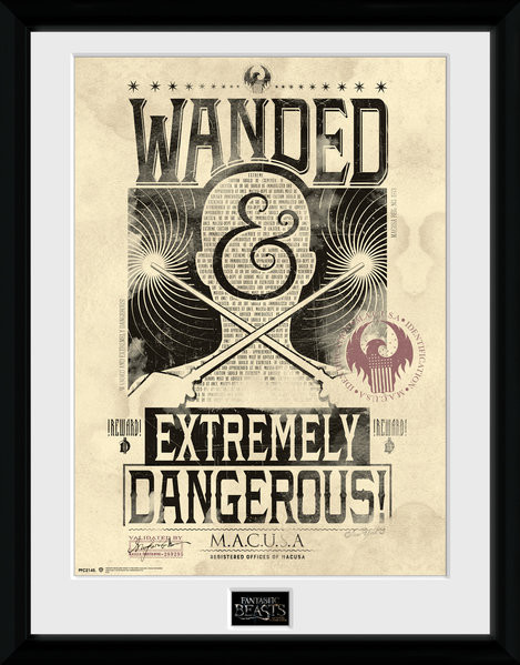 Fantastic Beasts And Where To Find Them - Wanded Framed poster