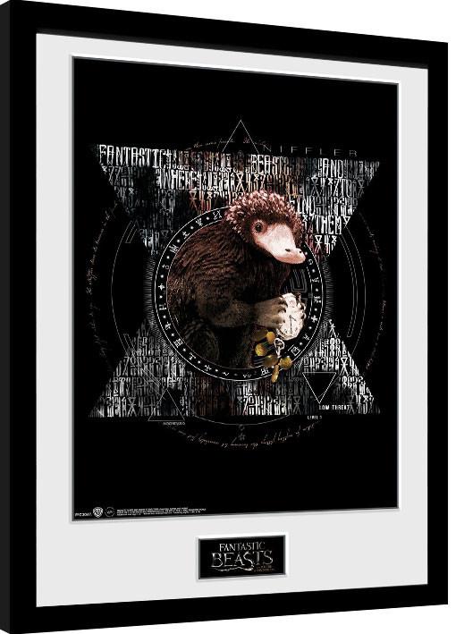 Fantastic Beasts - Niffler Circle Framed poster