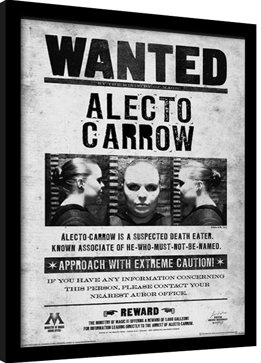 Harry Potter - Alecto Wanted Framed poster