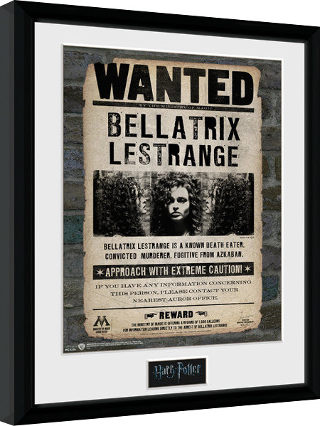 Harry Potter - Bellatrix Framed poster