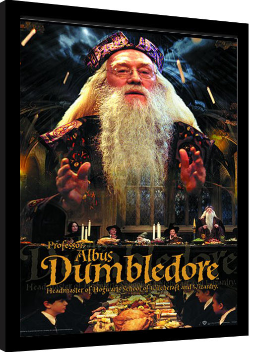 Harry Potter Dumbledore Framed Poster Buy At Europosters