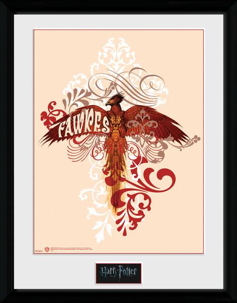 Harry Potter - Fawkes Framed poster