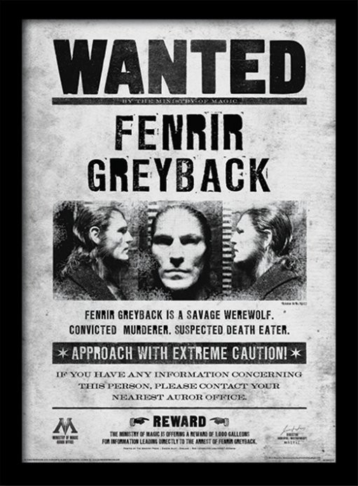 Harry Potter - Fenrir Wanted Framed poster | Buy at Europosters