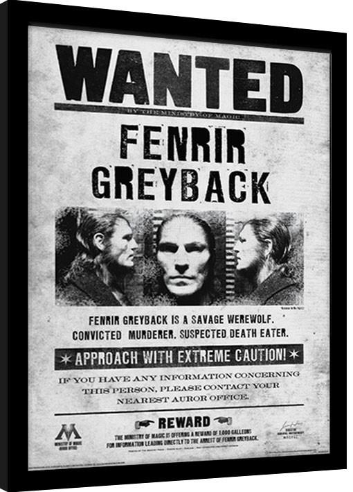 Harry Potter - Fenrir Wanted Framed poster