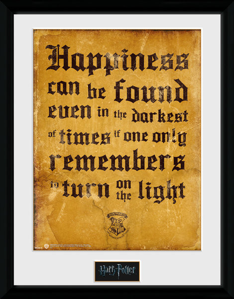 Framed poster Harry Potter - Happiness Can Be