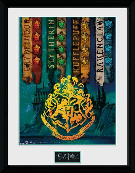 Framed poster Harry Potter - House Flags
