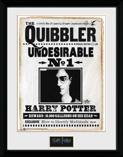 Harry Potter - Quibler Framed poster