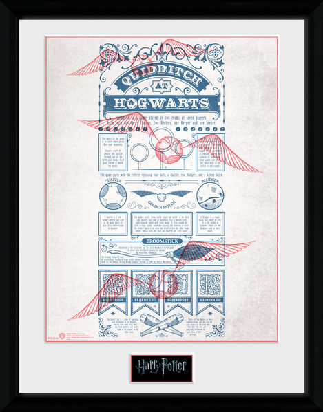 Harry Potter - Quidditch at Hogwarts Framed poster