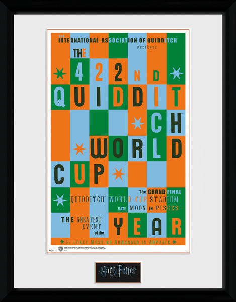 Harry Potter - Quidditch World Cup Framed poster