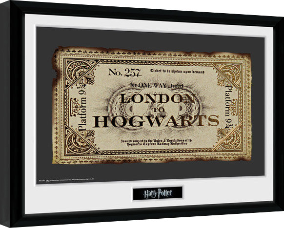 Harry Potter - Ticket Framed poster
