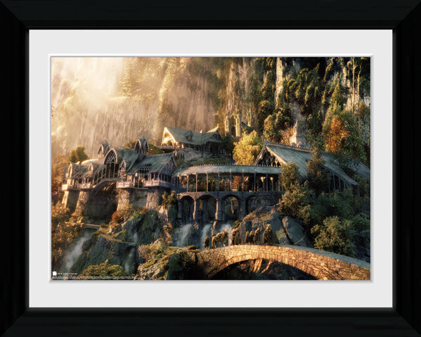 Framed poster Lord Of The Rings - Fellowship Of The Ring