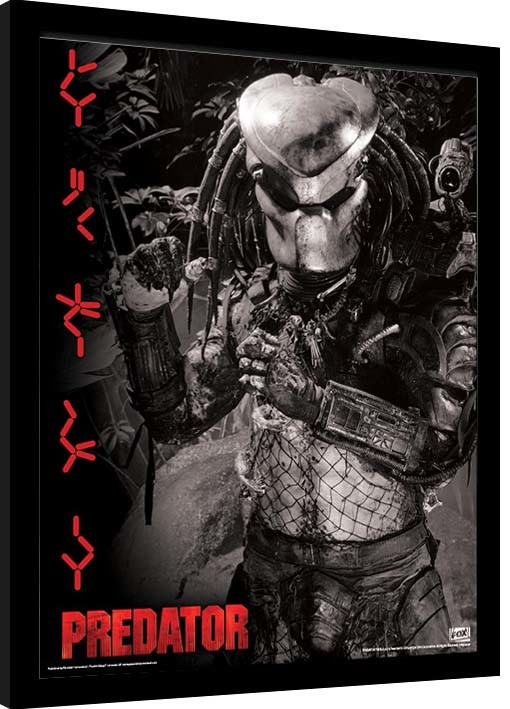 Framed poster Predator - Extraterrestrial Warrior
