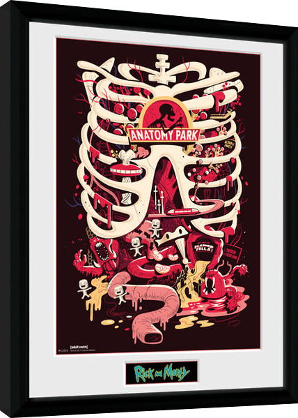 Framed poster Rick and Morty - Anatomy Park