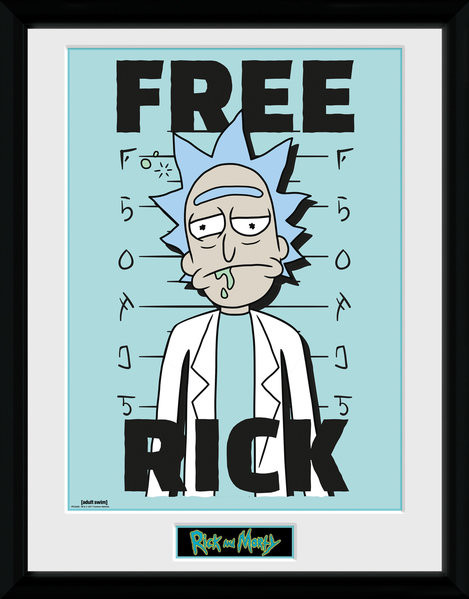 Framed poster Rick and Morty - Free Rick
