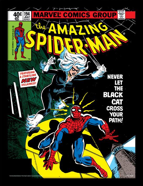 Framed poster Spider-Man - Black Cat