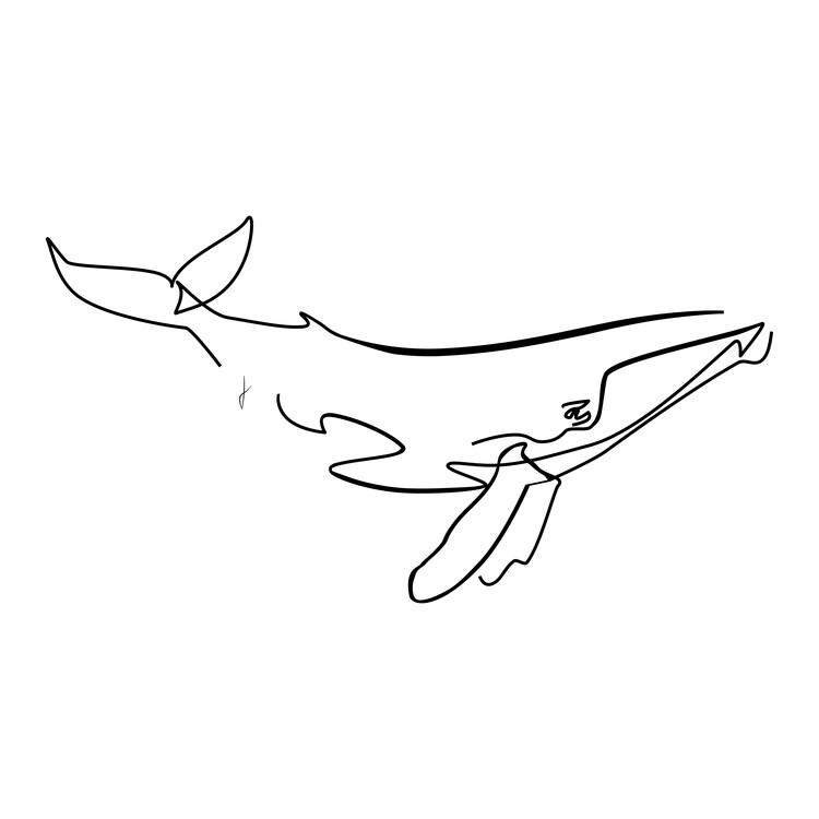 Art Print on Demand Balena