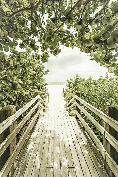 Art Print on Demand Bridge to the beach with mangroves | Vintage