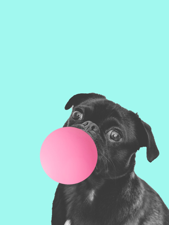 Art Print on Demand Bubblegum dog