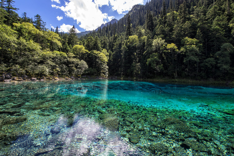 Art Print on Demand China 10MKm2 Collection - Beauty of Jiuzhaigou