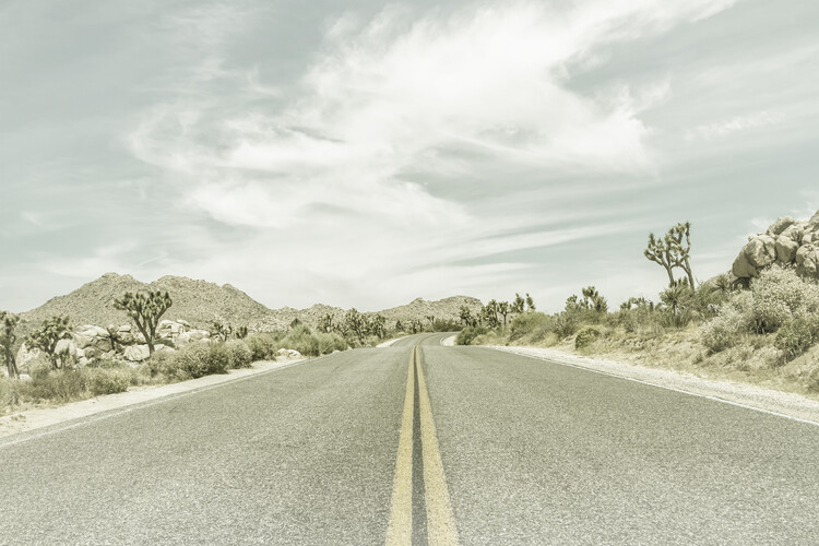 Art Print on Demand Country Road with Joshua Trees