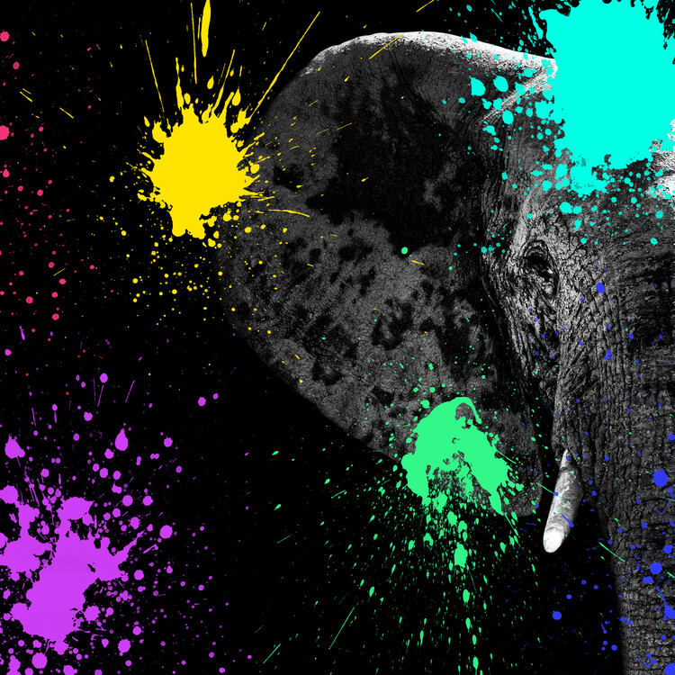 Art Print on Demand Elephant Portrait