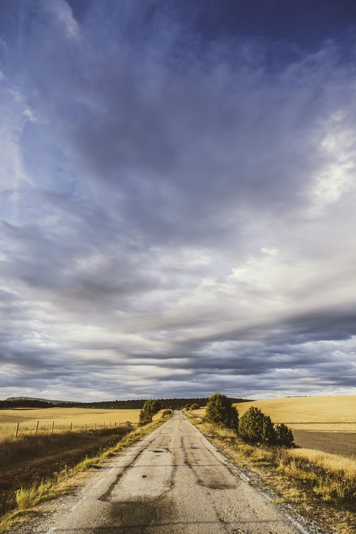 Art Print on Demand Empty road with a beautiful sky