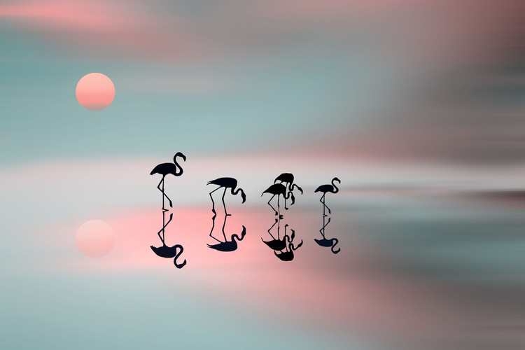 Art Print on Demand Family flamingos